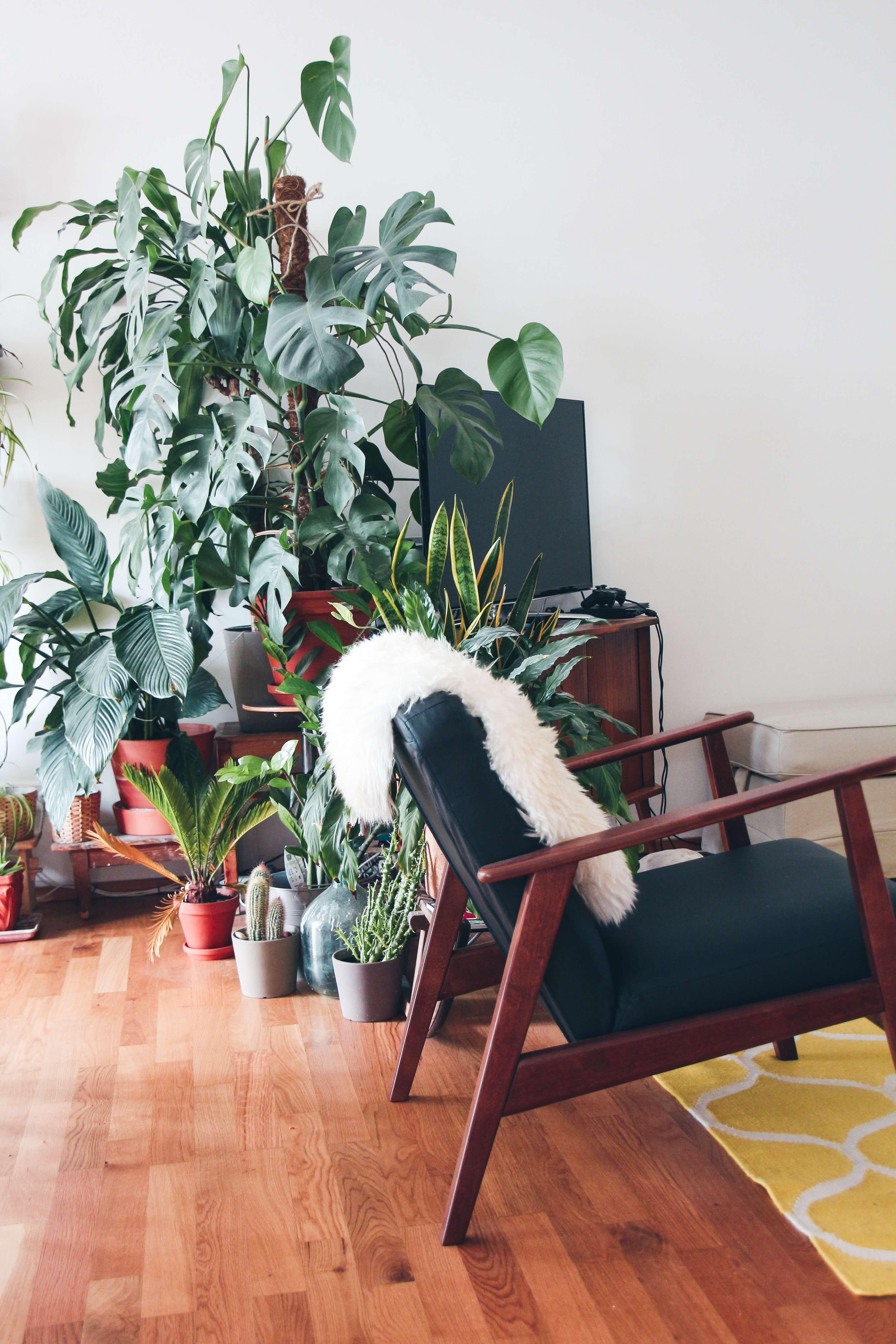 interior wellbeing